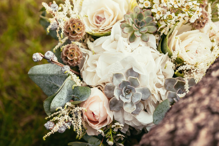 succulents in wedding flowers